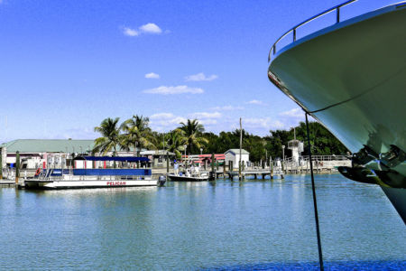 Florida-2013-26