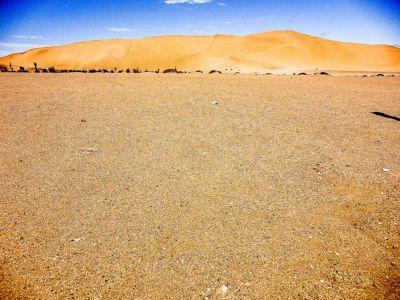 Dune 7.