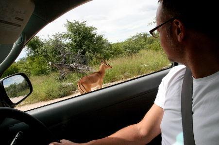 Namibia-2011-4