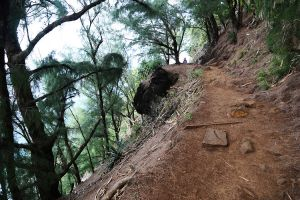 Hawaii-kauai-kalalau-trail-14