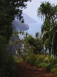 Hawaii-kauai-kalalau-trail-7