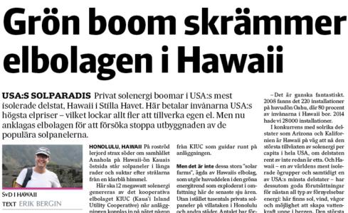 Hawaii-nliv-artikel-papper