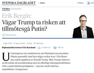 putin-trump-analys-svd-webb