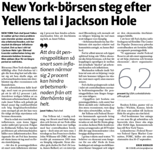 Yellen-artikel-svd