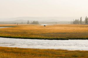 yellowstone1-aug2015-27