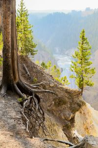 yellowstone2-aug2015-7