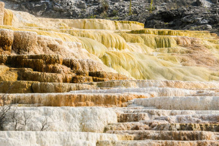 yellowstone3-aug2015-14